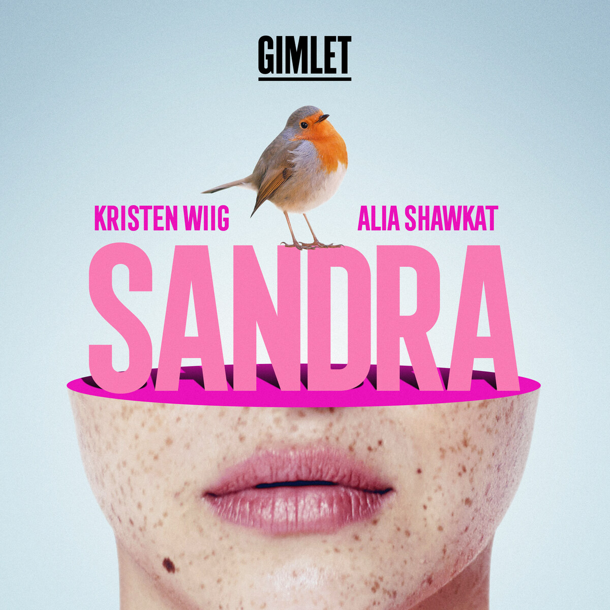 Show artwork for Sandra