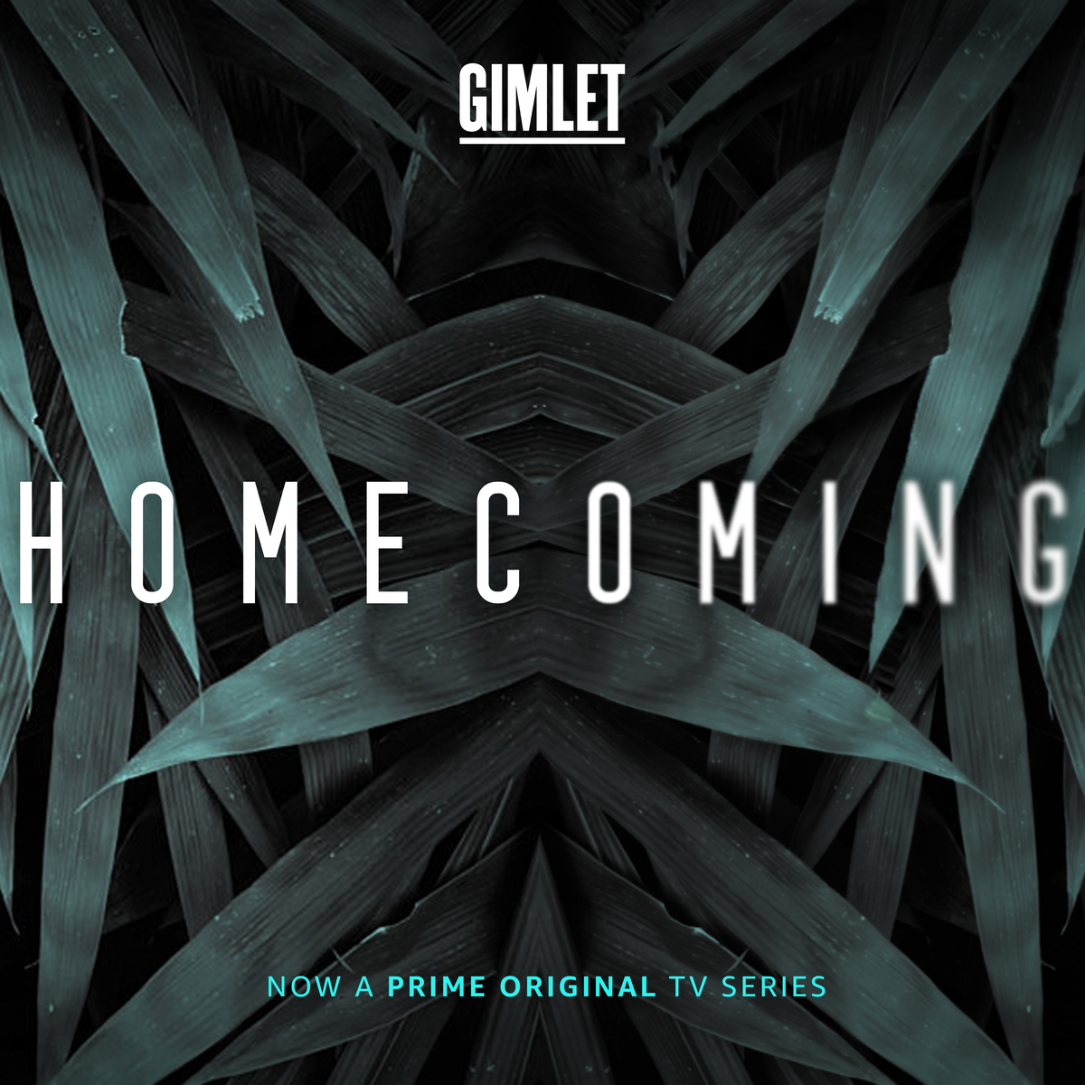 Show artwork for Homecoming